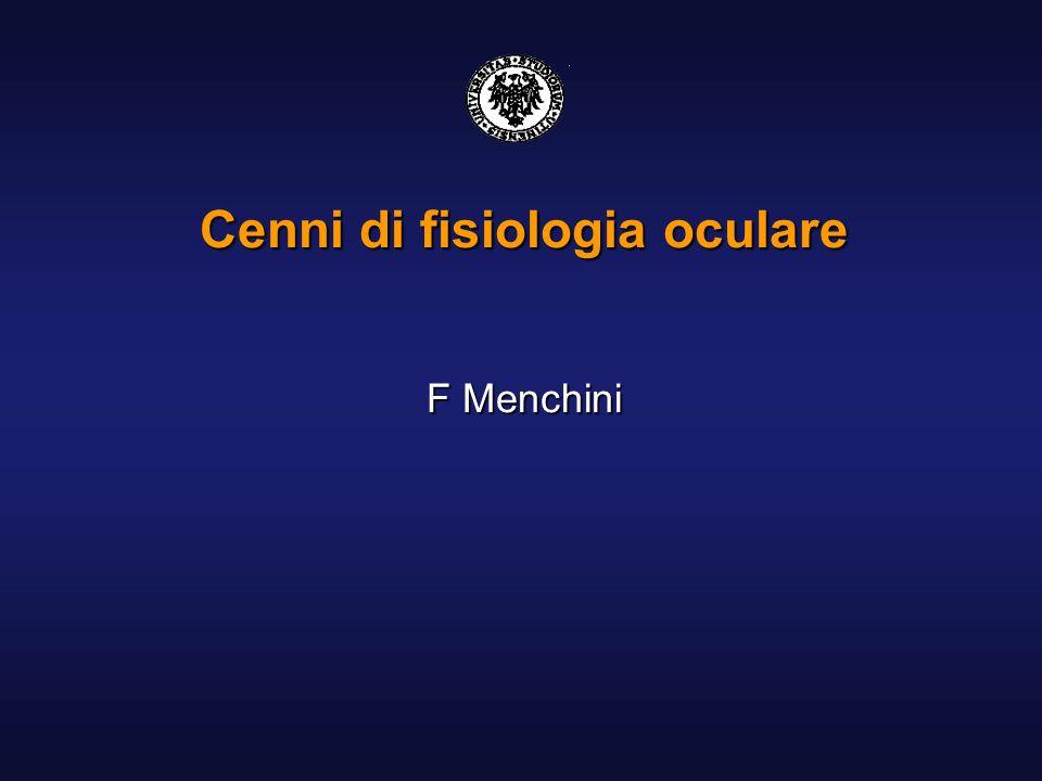 Cenni di fisiologia oculare