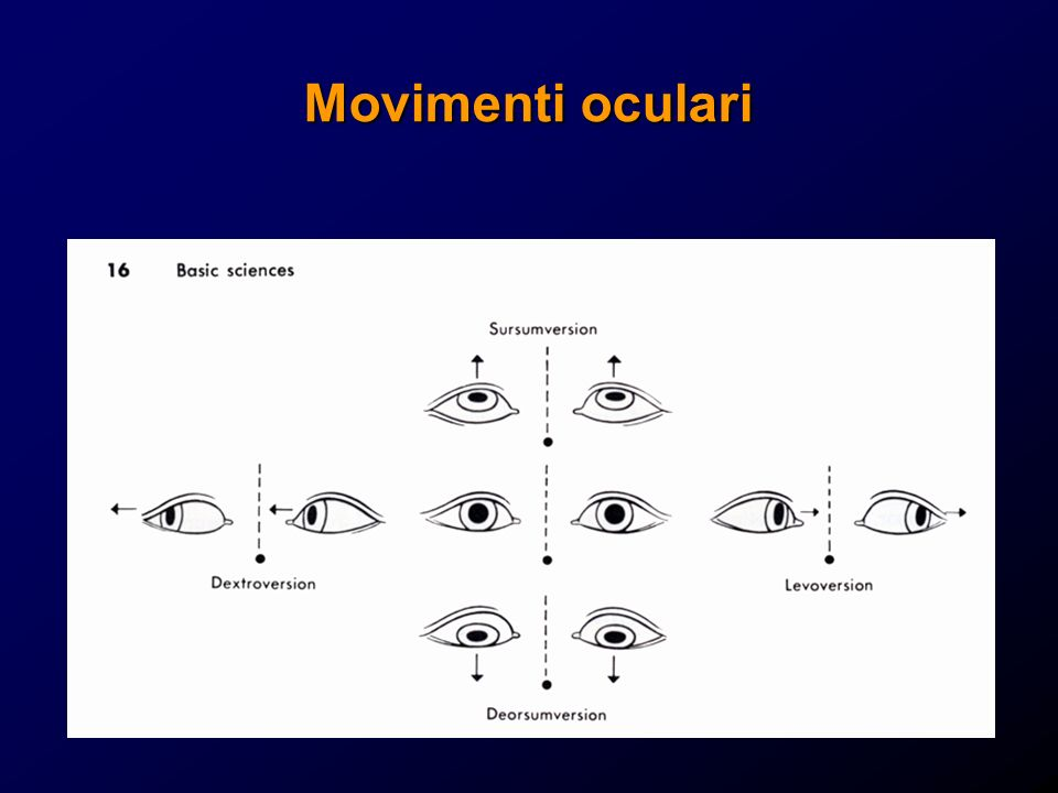 Movimenti oculari