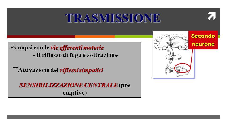 SENSIBILIZZAZIONE CENTRALE (pre emptive)