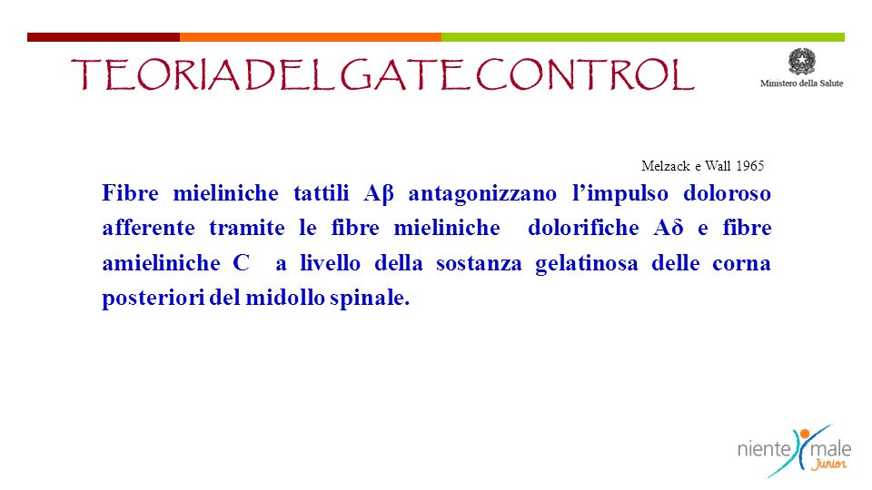 TEORIA DEL GATE CONTROL