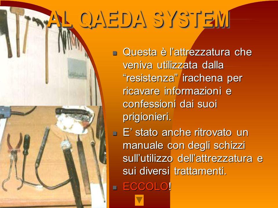 AL QAEDA SYSTEM