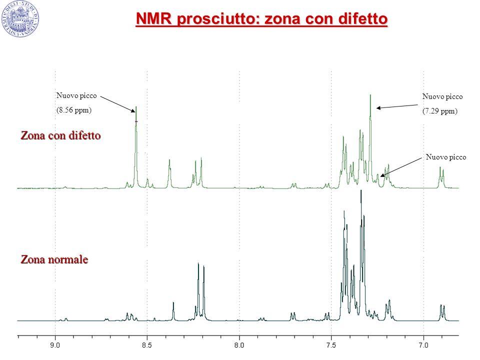 NMR prosciutto: zona con difetto