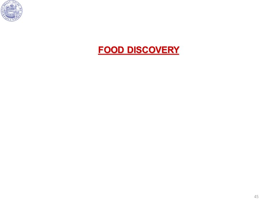 FOOD DISCOVERY