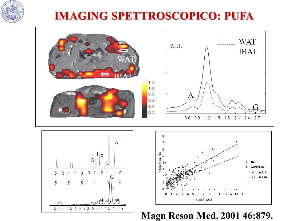 IMAGING SPETTROSCOPICO: PUFA