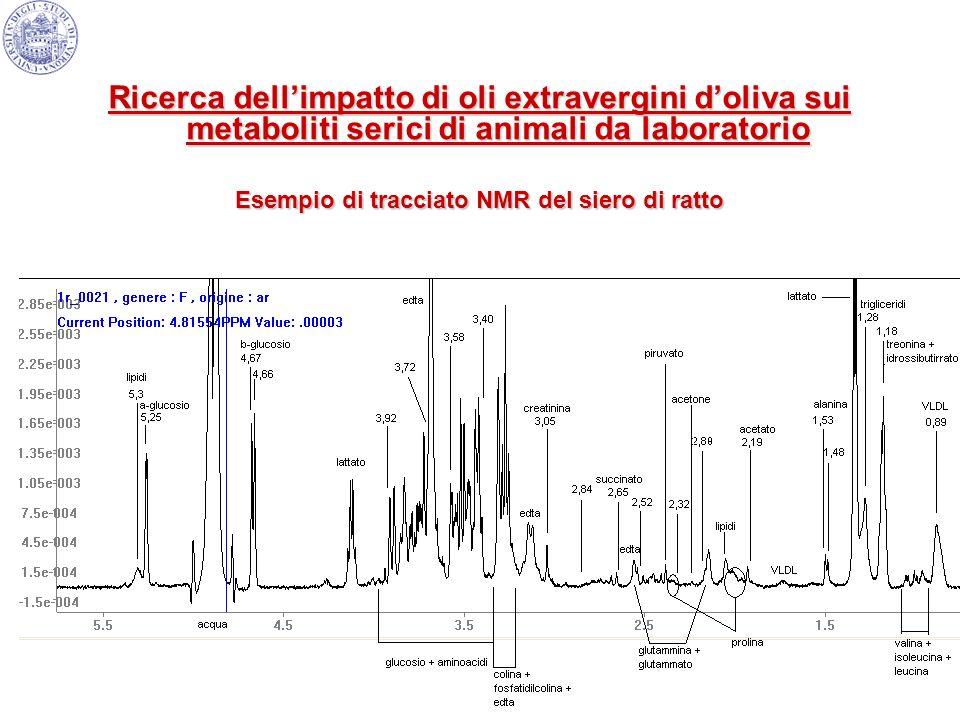 Esempio di tracciato NMR del siero di ratto