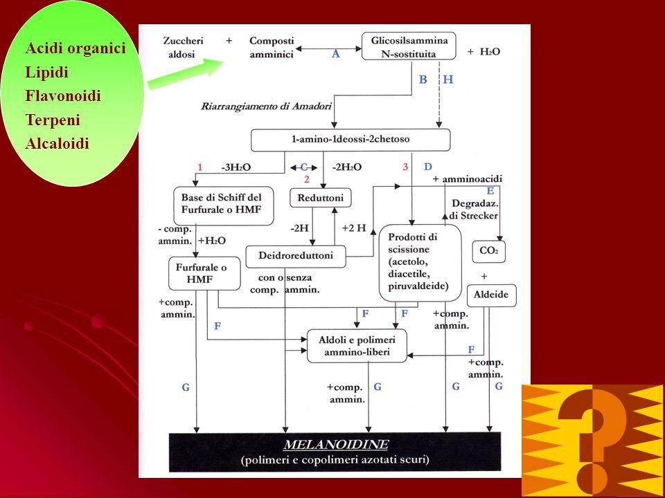 Acidi organici Lipidi Flavonoidi Terpeni Alcaloidi