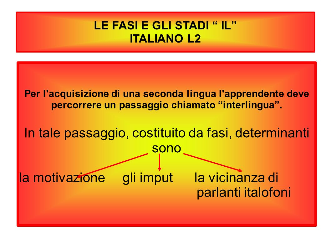 LE FASI E GLI STADI IL ITALIANO L2