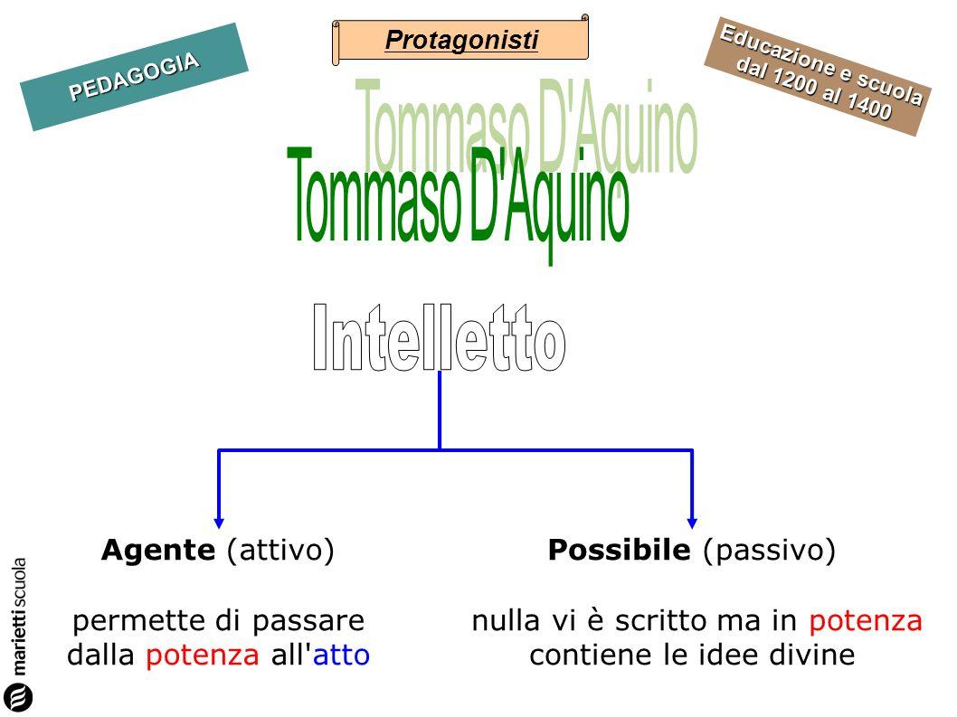 Tommaso D Aquino Intelletto Agente (attivo)