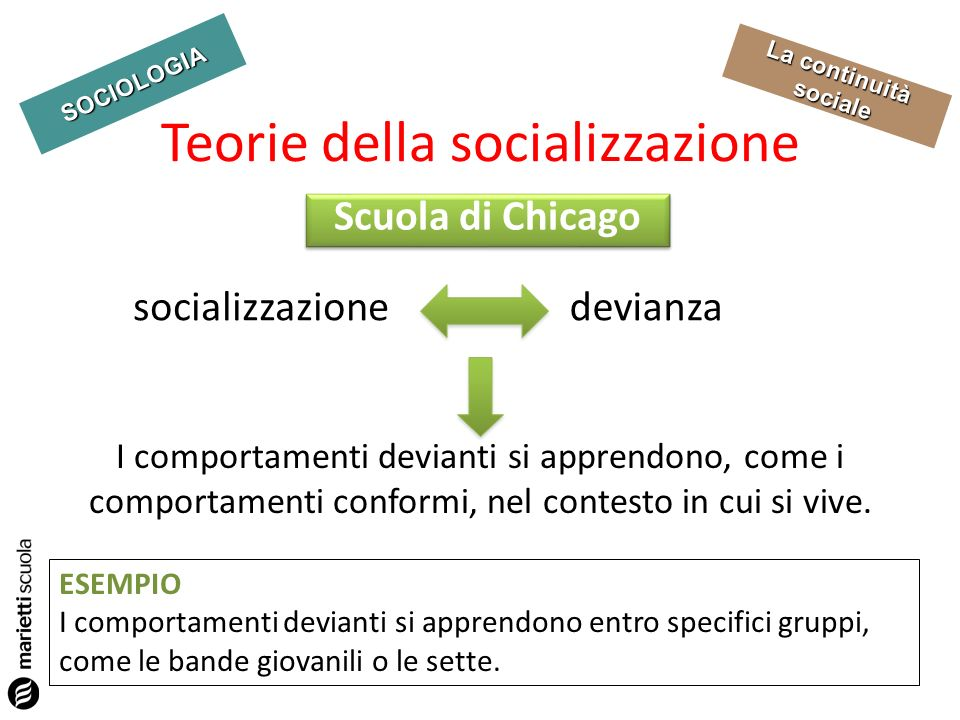 Teorie della socializzazione