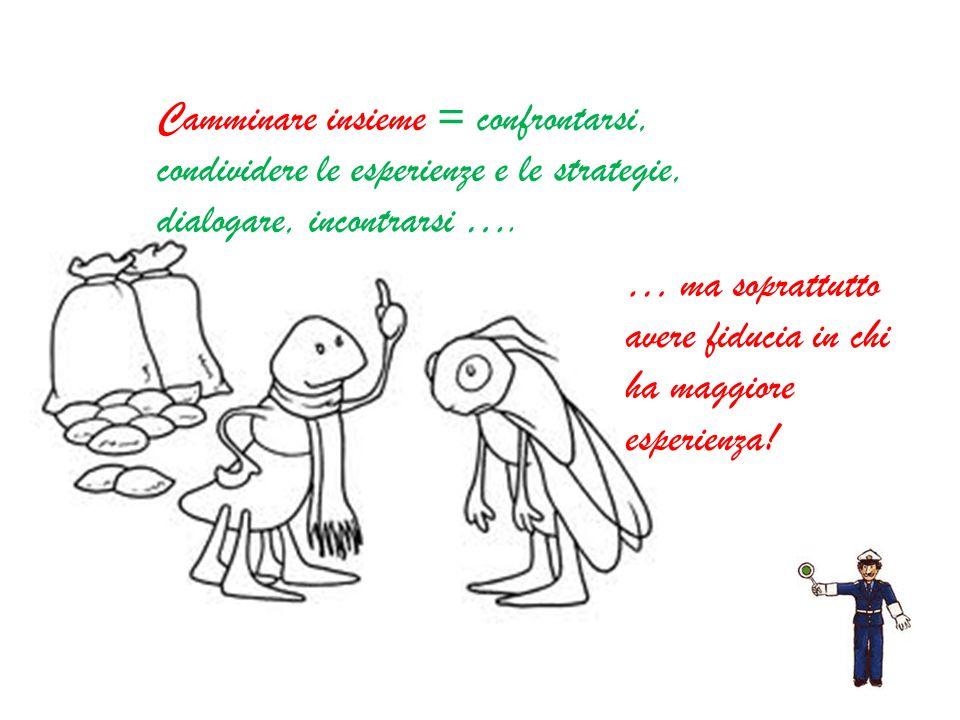 Camminare insieme = confrontarsi, condividere le esperienze e le strategie, dialogare, incontrarsi ….