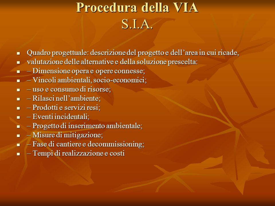 Procedura della VIA S.I.A.