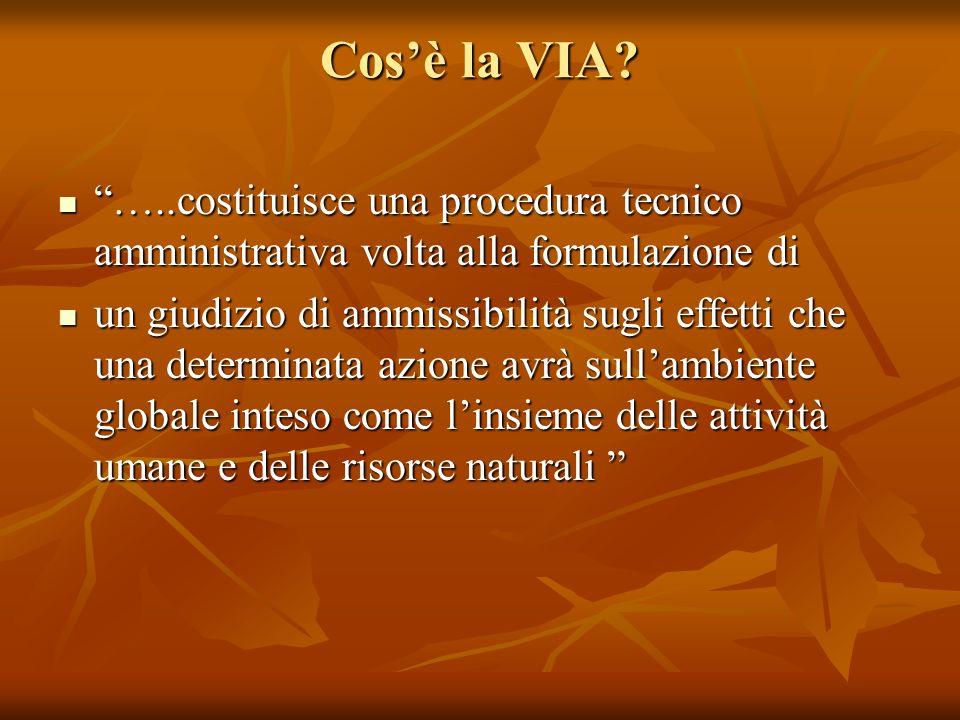 Cos'è la VIA …..costituisce una procedura tecnico amministrativa volta alla formulazione di.