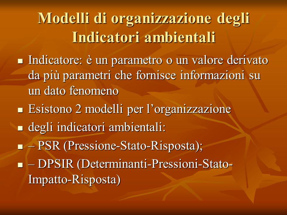 Modelli di organizzazione degli Indicatori ambientali