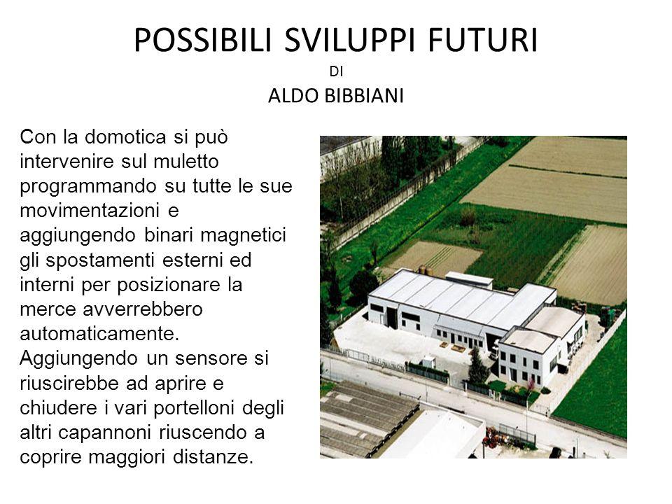 POSSIBILI SVILUPPI FUTURI DI ALDO BIBBIANI