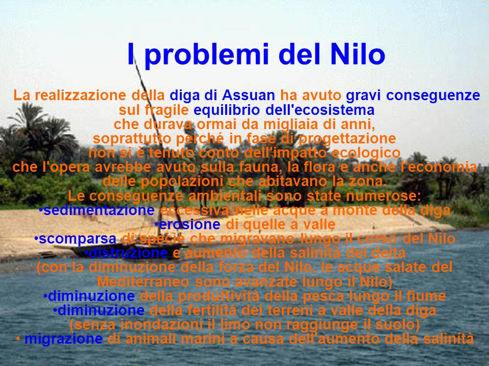 I problemi del Nilo La realizzazione della diga di Assuan ha avuto gravi conseguenze. sul fragile equilibrio dell ecosistema.
