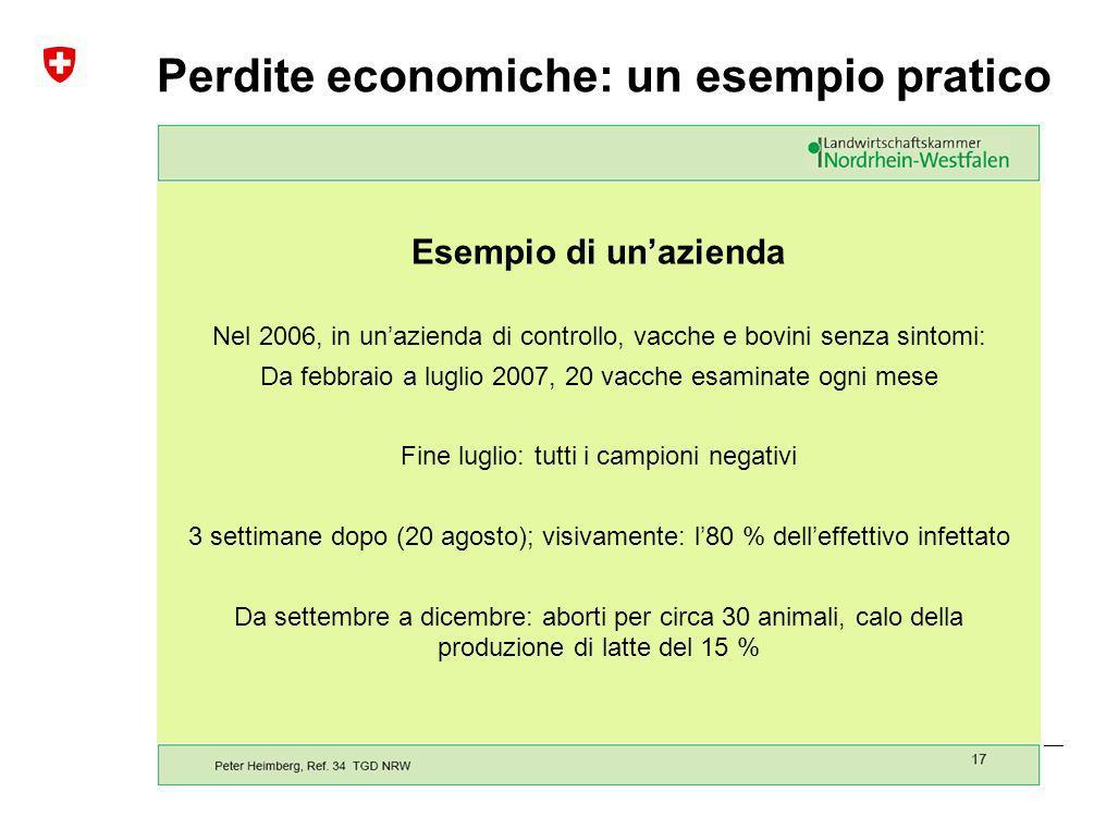 Perdite economiche: un esempio pratico