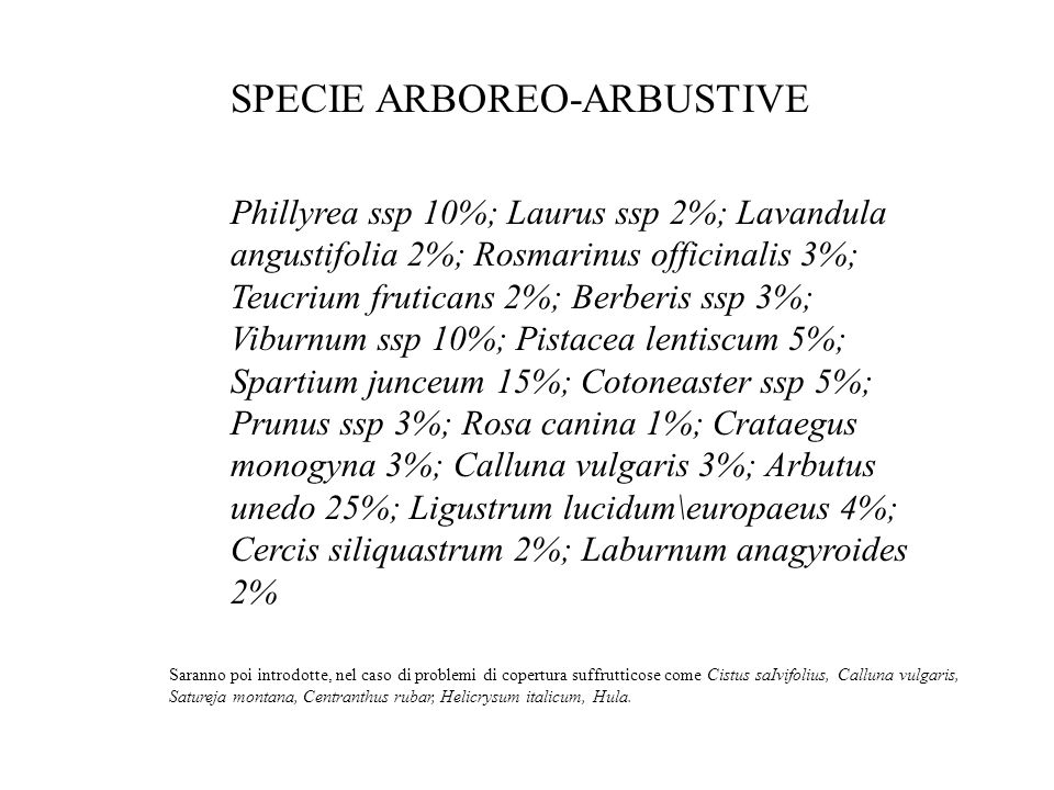 SPECIE ARBOREO-ARBUSTIVE
