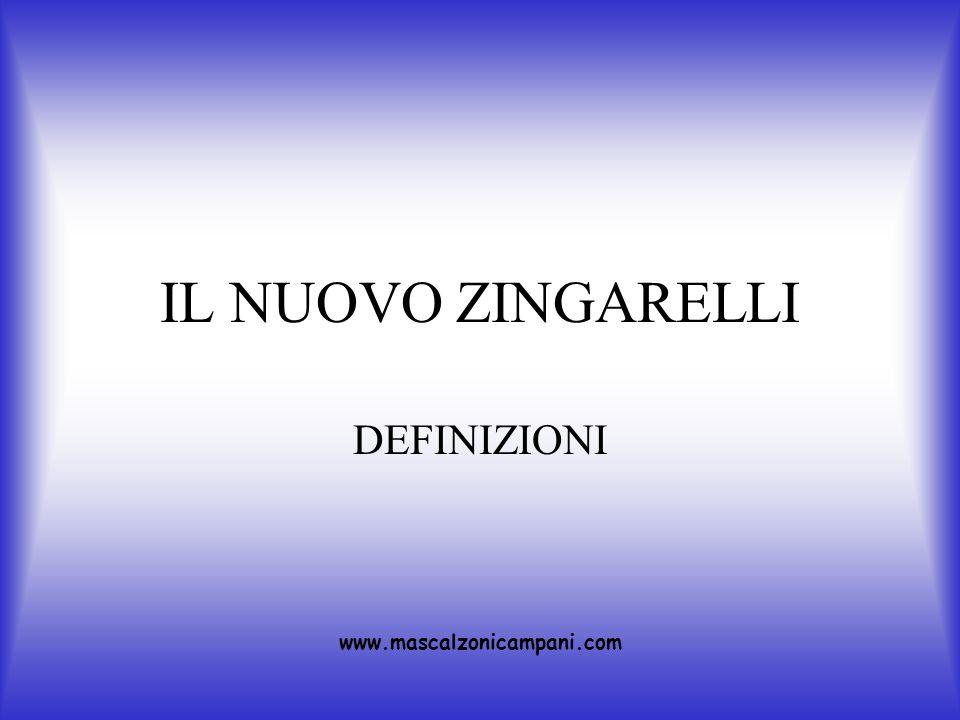 IL NUOVO ZINGARELLI DEFINIZIONI www.mascalzonicampani.com