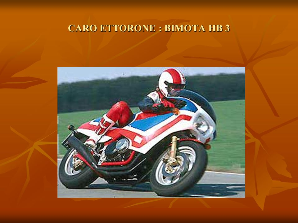 CARO ETTORONE : BIMOTA HB 3