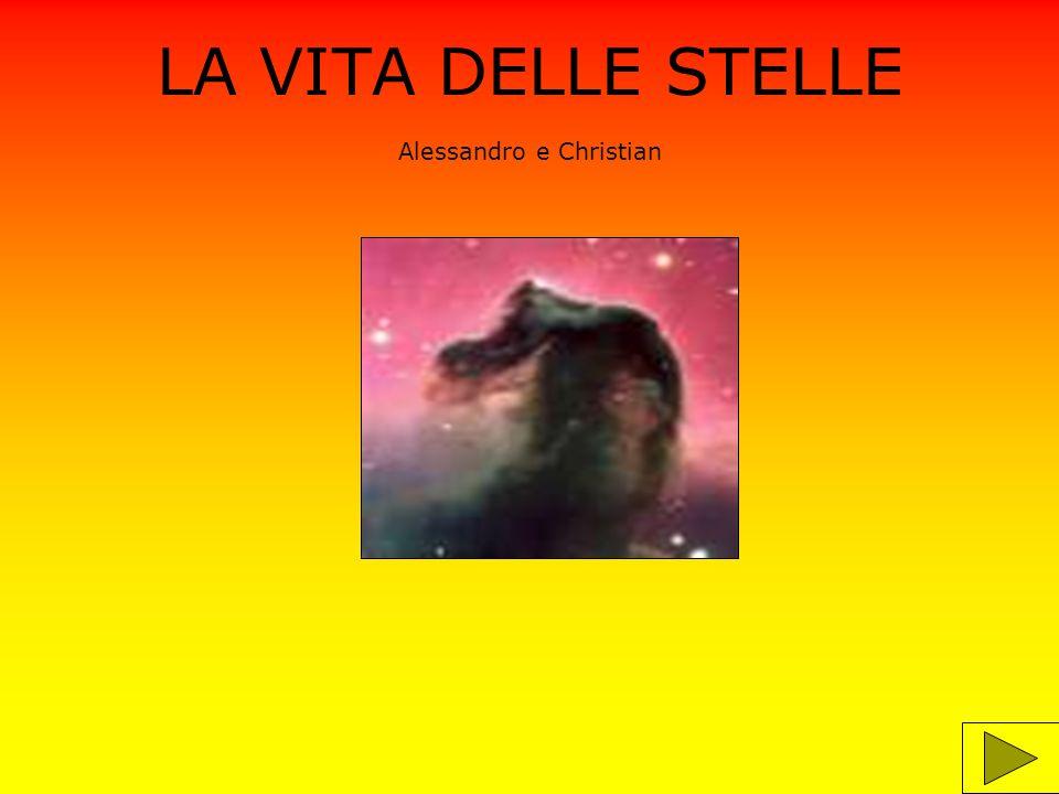 LA VITA DELLE STELLE Alessandro e Christian