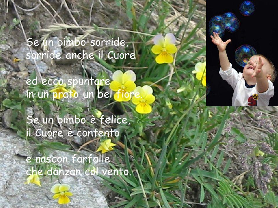 Se un bimbo sorride, sorride anche il Cuore ed ecco spuntare in un prato un bel fiore.