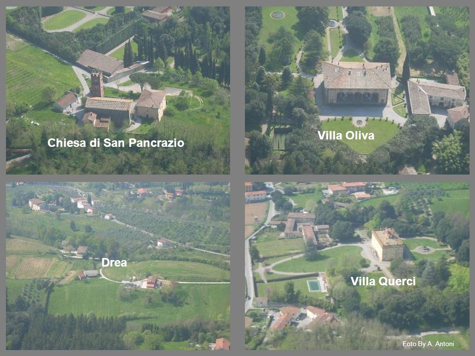 Villa Oliva Drea Villa Querci