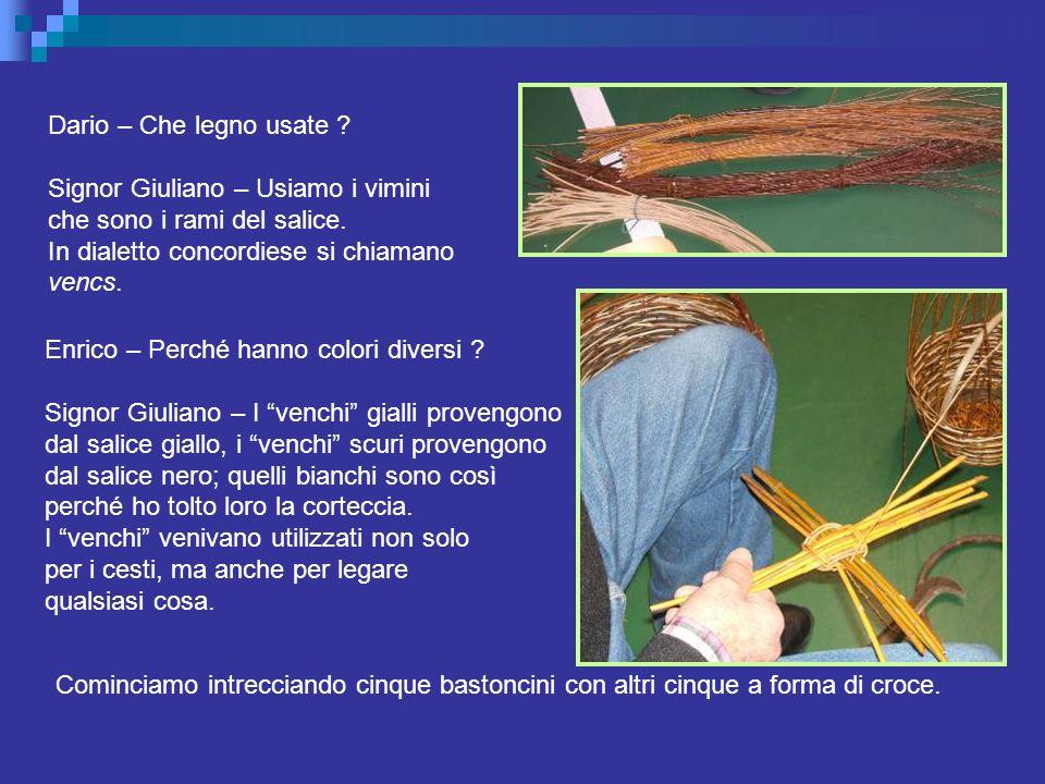 Dario – Che legno usate Signor Giuliano – Usiamo i vimini. che sono i rami del salice. In dialetto concordiese si chiamano.