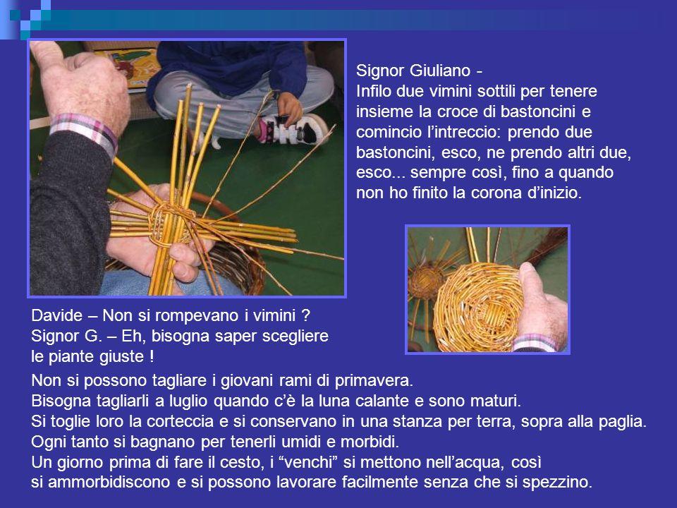 Signor Giuliano - Infilo due vimini sottili per tenere. insieme la croce di bastoncini e. comincio l'intreccio: prendo due.