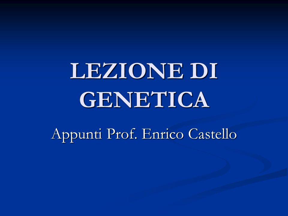 Appunti Prof. Enrico Castello