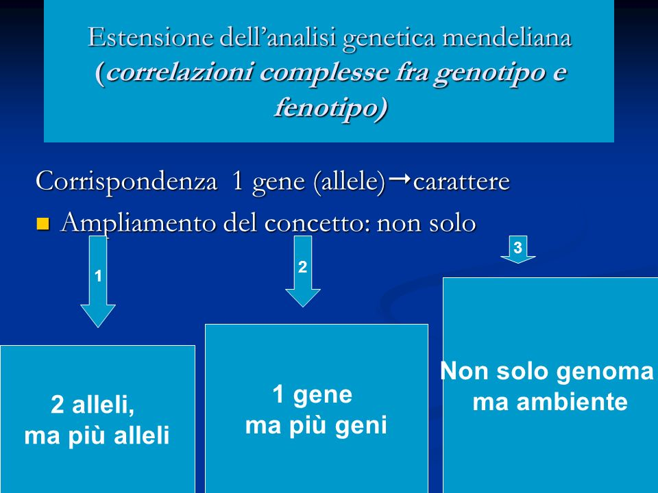 Corrispondenza 1 gene (allele)carattere