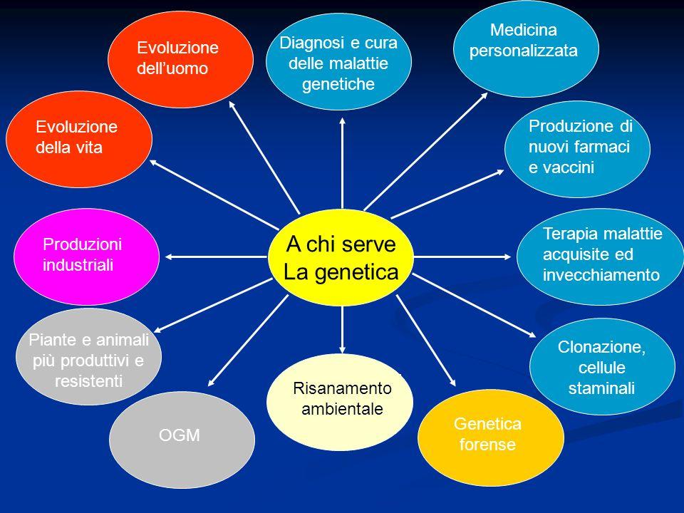 A chi serve La genetica Medicina personalizzata