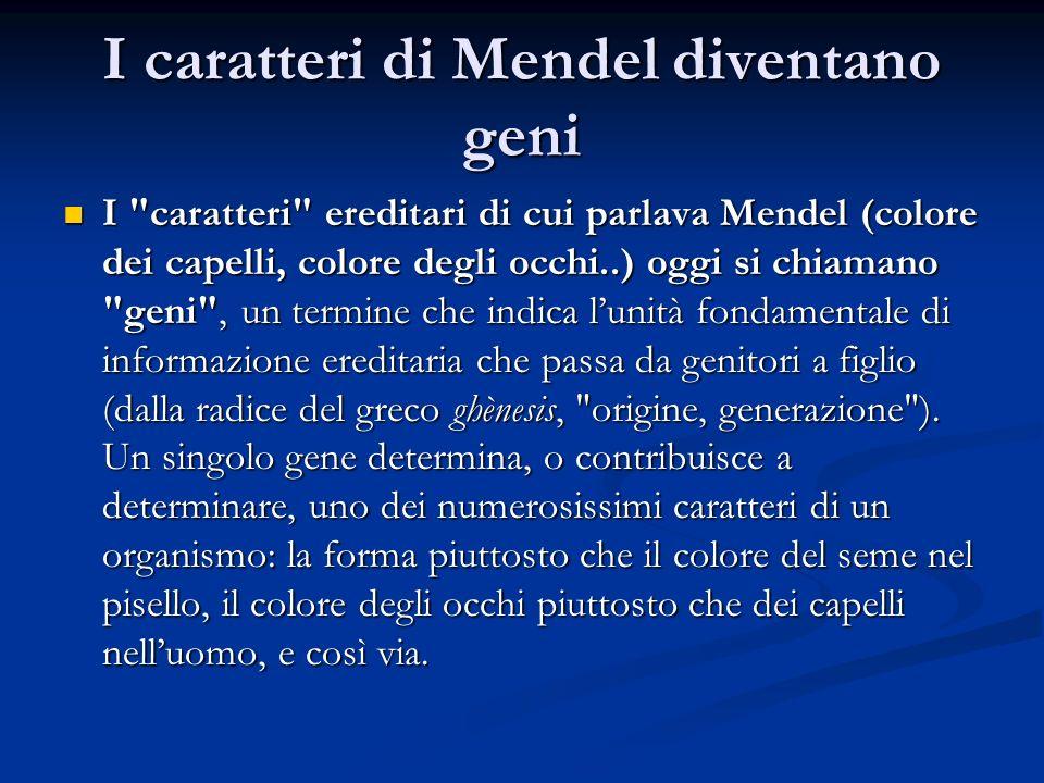 I caratteri di Mendel diventano geni