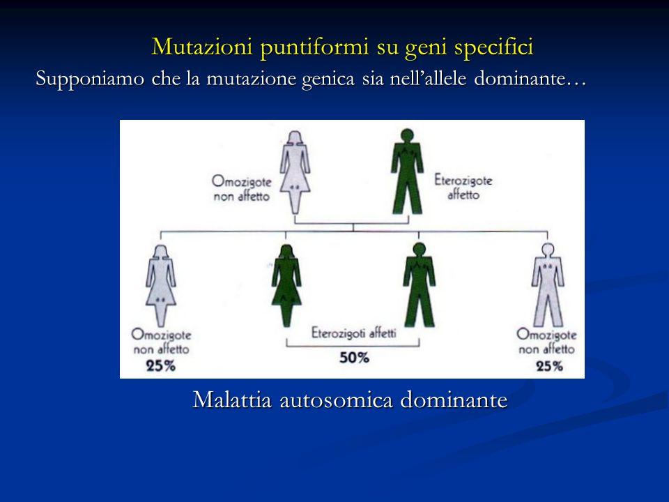 Mutazioni puntiformi su geni specifici