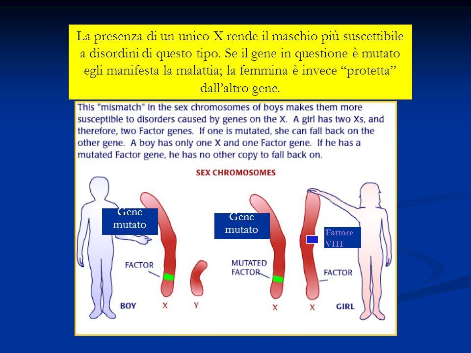 La presenza di un unico X rende il maschio più suscettibile a disordini di questo tipo. Se il gene in questione è mutato egli manifesta la malattia; la femmina è invece protetta dall'altro gene.