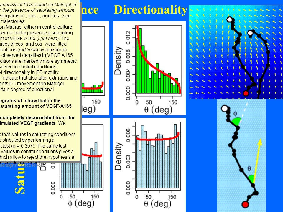 Saturated Persistence Directionality Control
