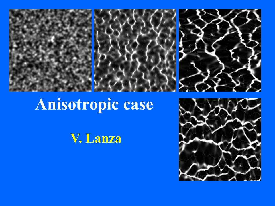 Anisotropic case V. Lanza