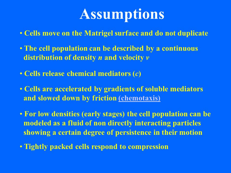 Assumptions Cells move on the Matrigel surface and do not duplicate