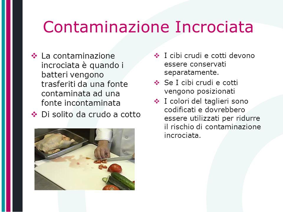 Contaminazione Incrociata