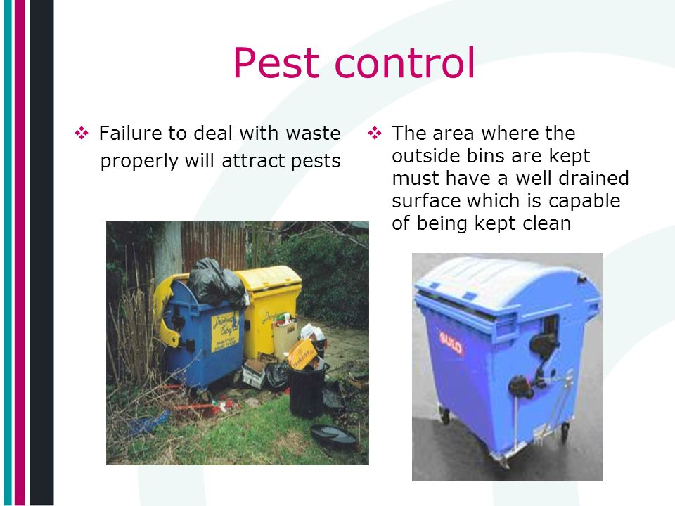 Pest control Failure to deal with waste properly will attract pests