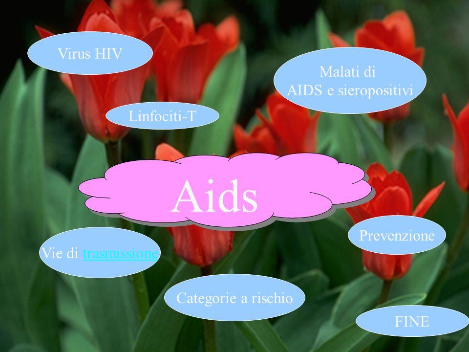 Aids Virus HIV Malati di AIDS e sieropositivi Linfociti-T Prevenzione