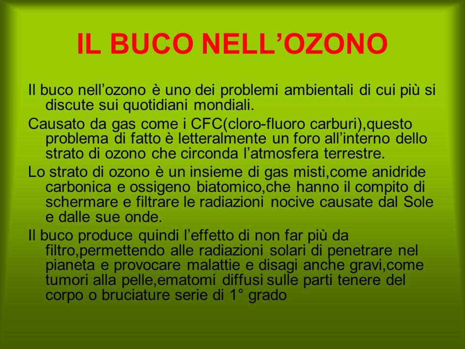 IL BUCO NELL'OZONO Il buco nell'ozono è uno dei problemi ambientali di cui più si discute sui quotidiani mondiali.