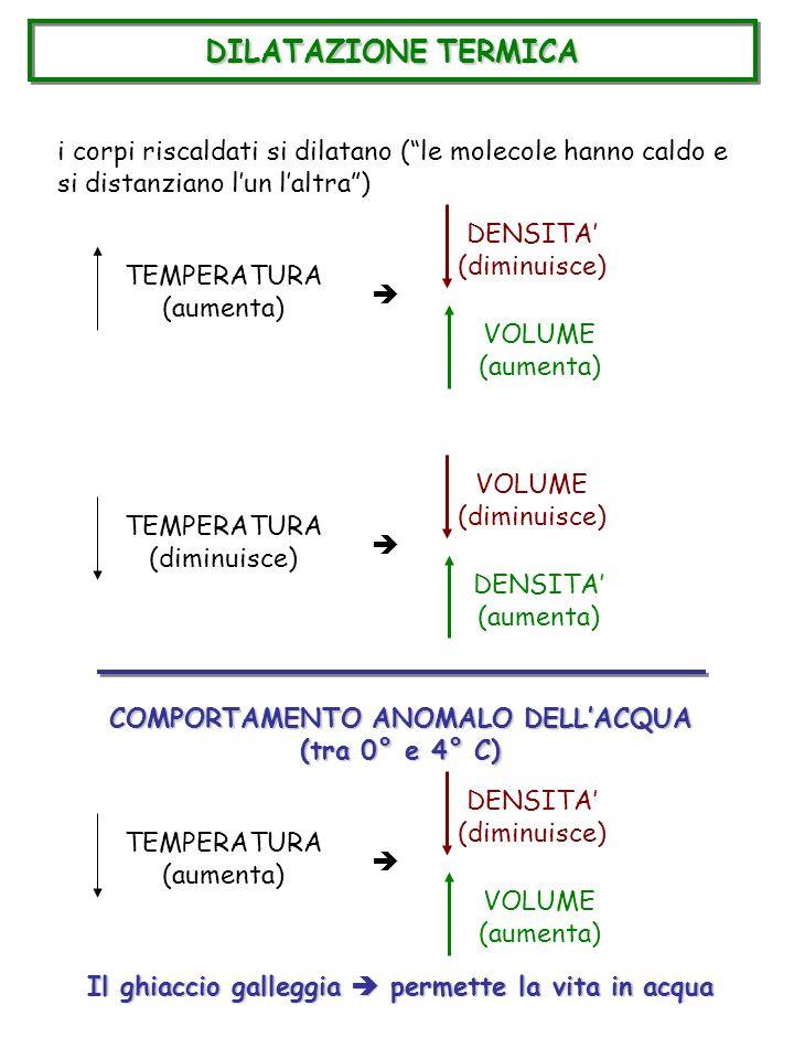 DILATAZIONE TERMICA i corpi riscaldati si dilatano ( le molecole hanno caldo e si distanziano l'un l'altra )