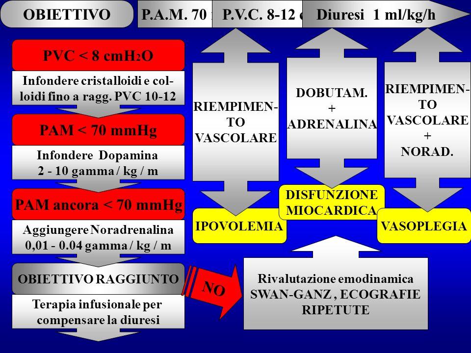 OBIETTIVO P.A.M. 70 mmHg P.V.C. 8-12 cmH2O Diuresi 1 ml/kg/h