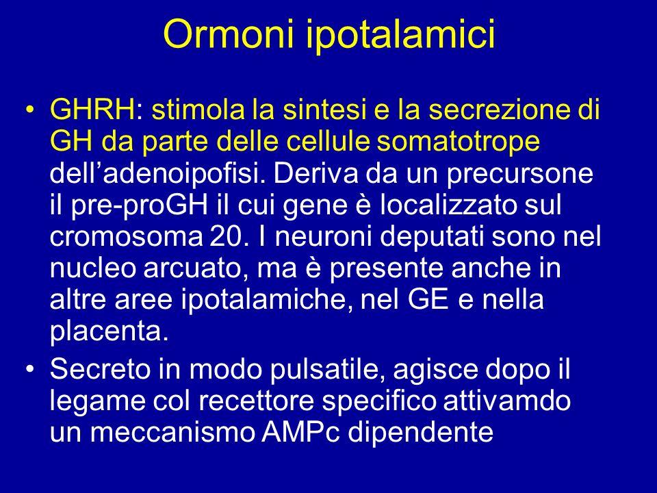 Ormoni ipotalamici