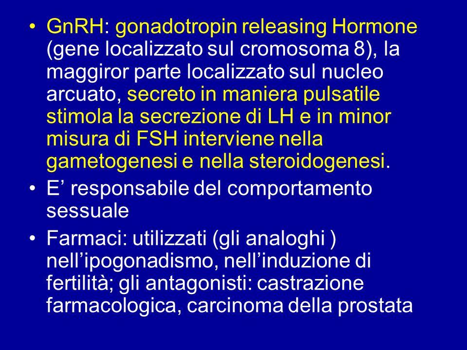 GnRH: gonadotropin releasing Hormone (gene localizzato sul cromosoma 8), la maggiror parte localizzato sul nucleo arcuato, secreto in maniera pulsatile stimola la secrezione di LH e in minor misura di FSH interviene nella gametogenesi e nella steroidogenesi.