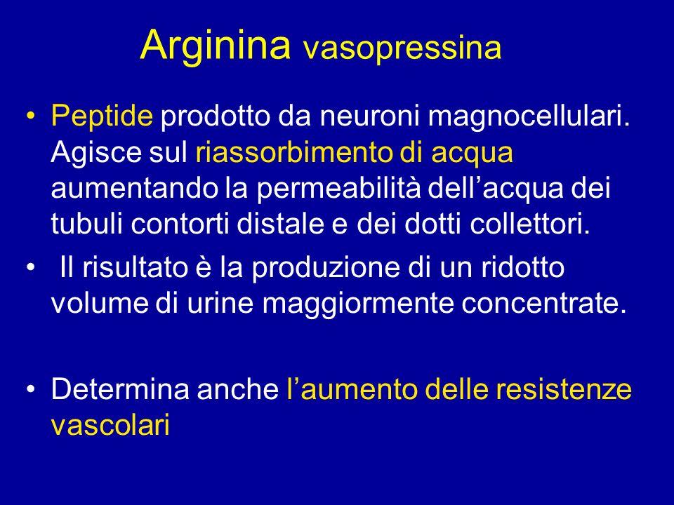 Arginina vasopressina