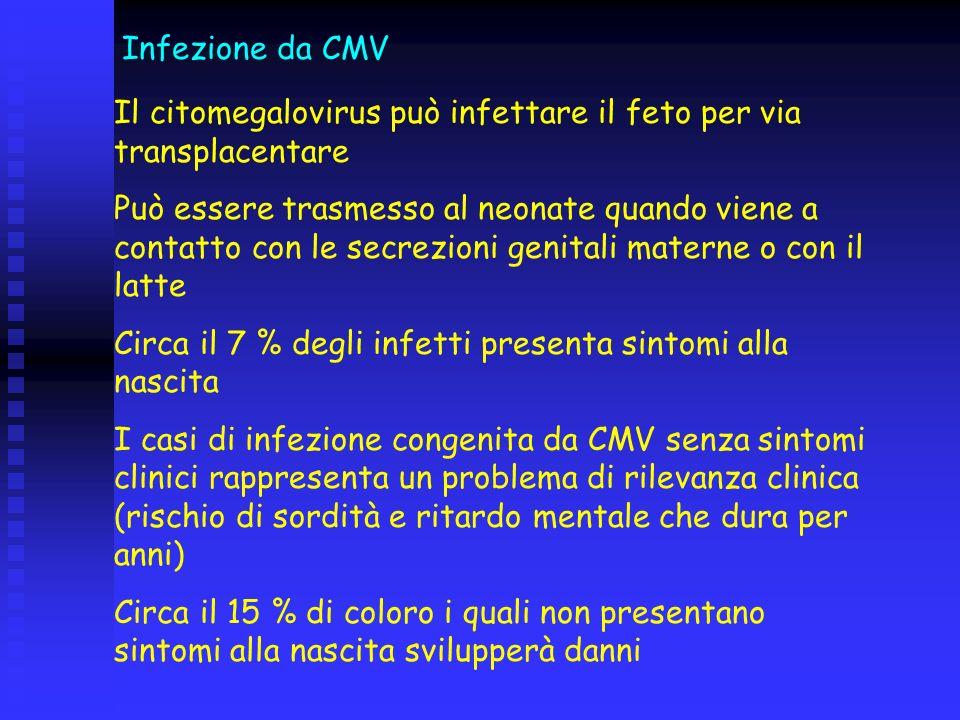 Infezione da CMV Il citomegalovirus può infettare il feto per via transplacentare.