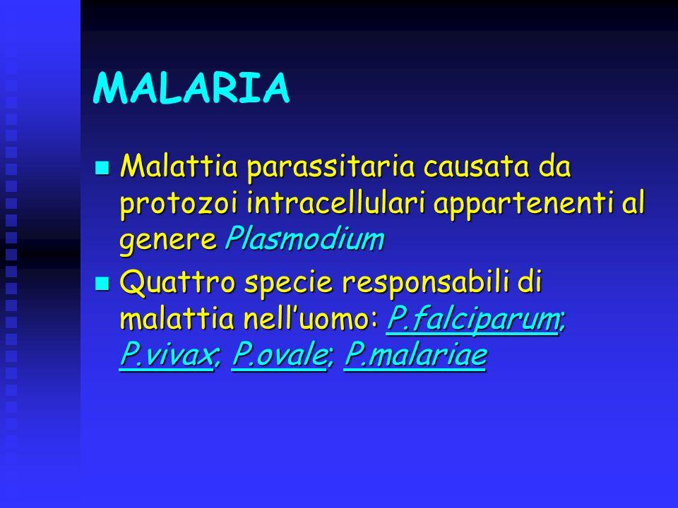 MALARIA Malattia parassitaria causata da protozoi intracellulari appartenenti al genere Plasmodium.