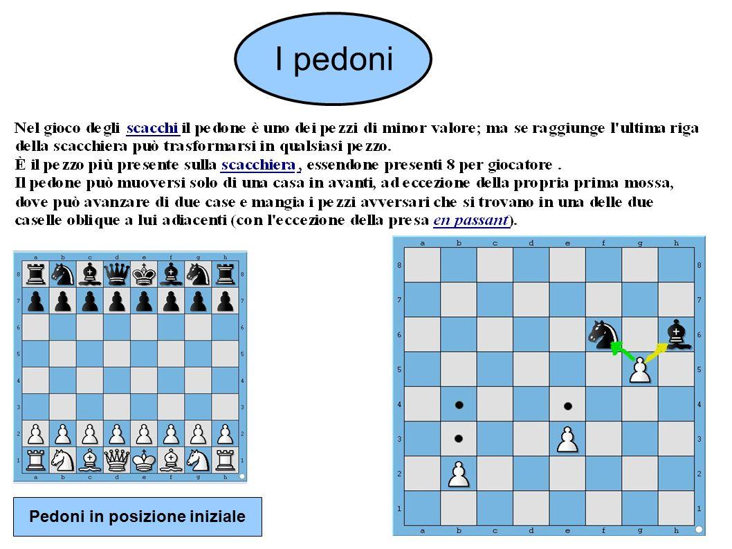 I pedoni Pedoni in posizione iniziale