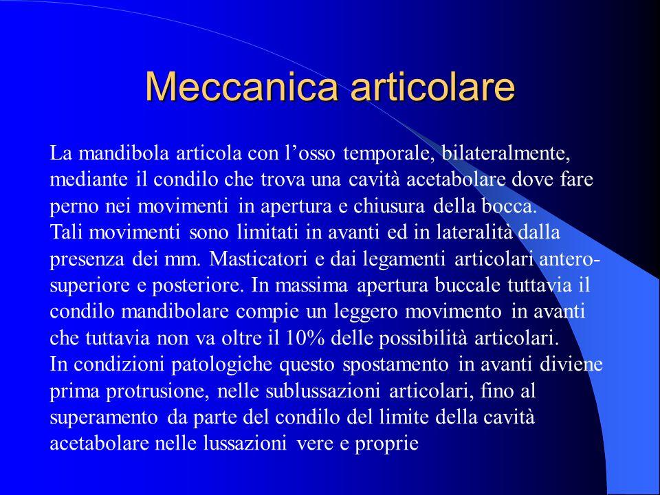 Meccanica articolare